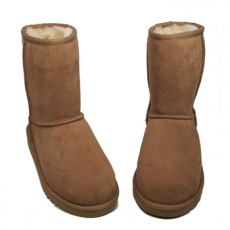 Turkissaappaat-isot-Chestnut- Classic short UGG® Australia